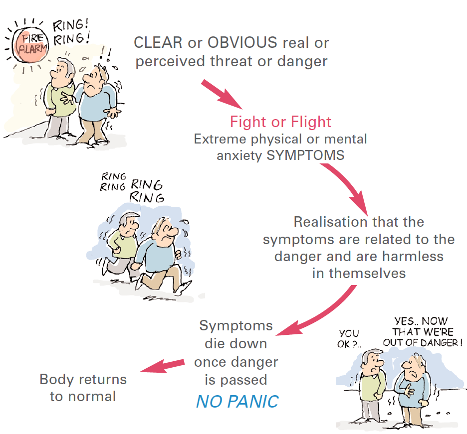 Fight or Flight Sensations are not actually harmful