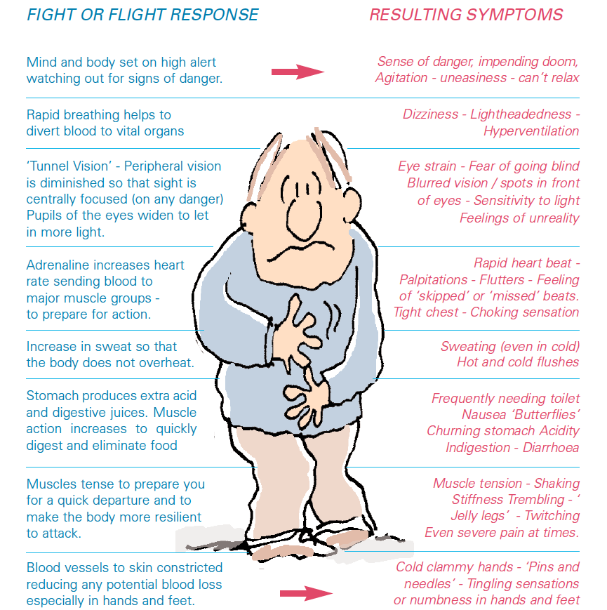 flight or fight response The fight-or-flight response is a physiological reaction that either prepares our  bodies to stay and fight or to flee learn how this response.
